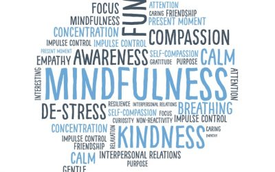 Mindfulness for Organisations
